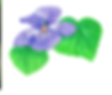 Early violet_2Leafs.png