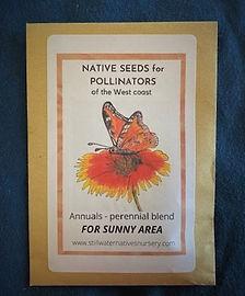 Seeds_Sunny_A.jpg