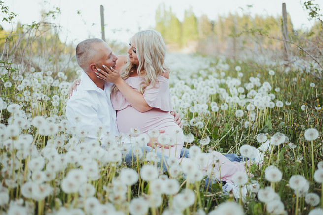 Top Maternity Photographer in Campbell River BC takes photos of new momma in pink maternity dress. The couple is sitting in a dandelion field