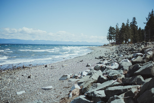 Top 10 Reasons why you should hire a Wedding Videographer Vancouver Island
