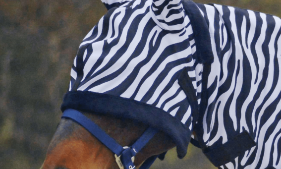 Anti Fly Mask Zebra