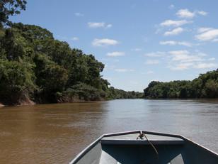 rio curisevo HN1158_mehinaku
