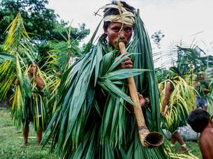flauta de rabo de tatu, ritual, música HN0018_kaxinawa