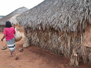 mulher transportando cestos, casa tradicional  HN0277_xavante