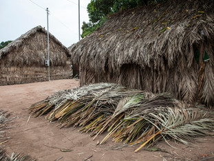 casa tradicional e palhas de buriti HN0334_karaja