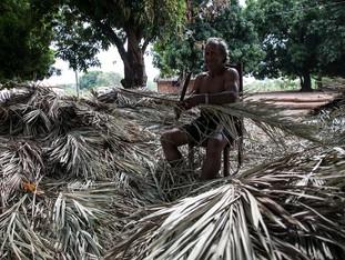 preparando a palha de buriri para a cobertra das casas HN0337_karaja