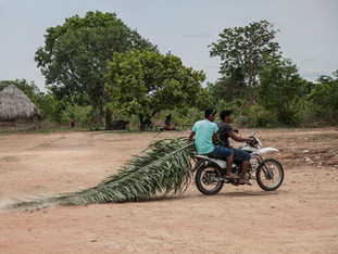 transporte de folha de buriti motorizado HN0840_karaja