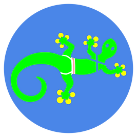 gecko2.png