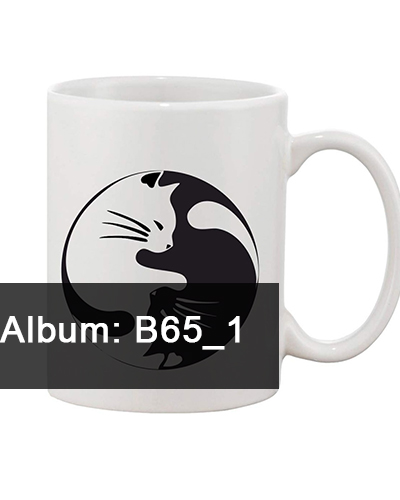 B65-1