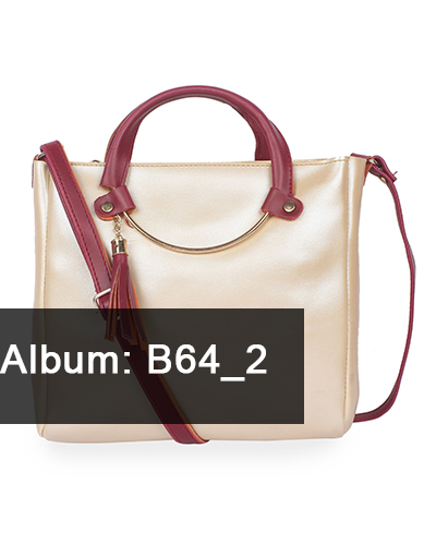 B64-2