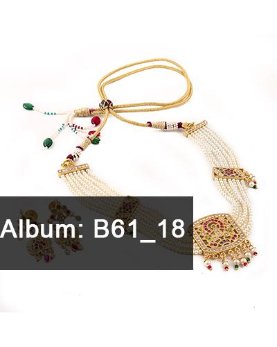 B61-18