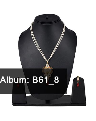 B61-8