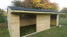 double shelter horses