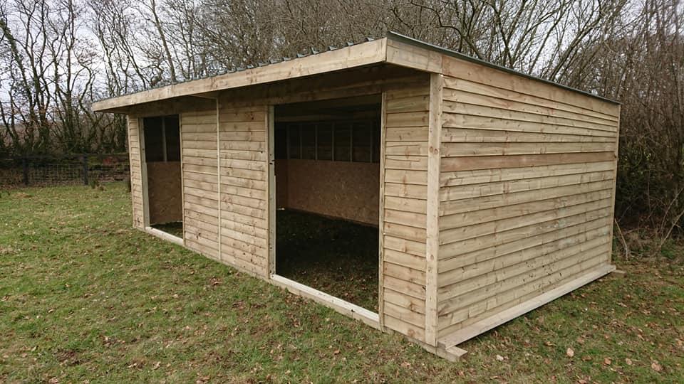 budget shelter