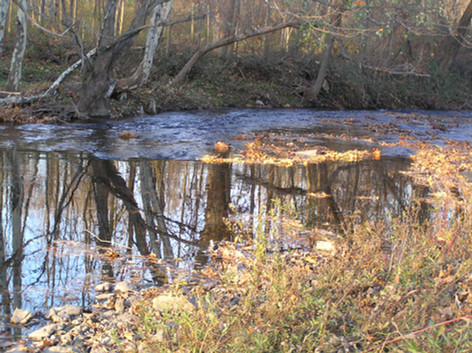 Tranquil waters of Poquessing headwaters