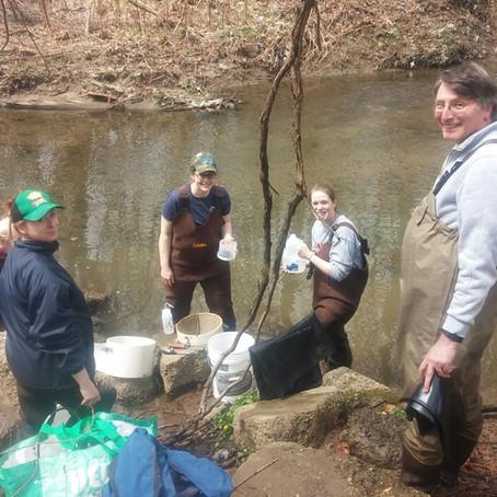 Fun and hard work of spring water quality sampling