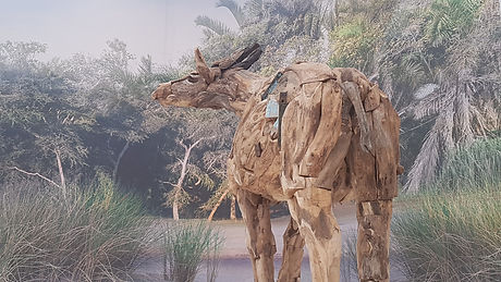 Representation of a short-necked giraffe