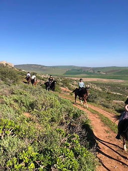Wolwefontein Horse Trails.jpg