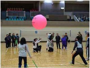 第30回健康づくり「軽スポーツ大会」開かれる