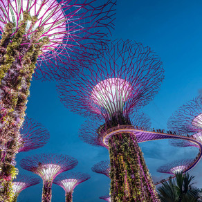 Singapore Will Need To Weigh Pros And Cons Of SPACS.