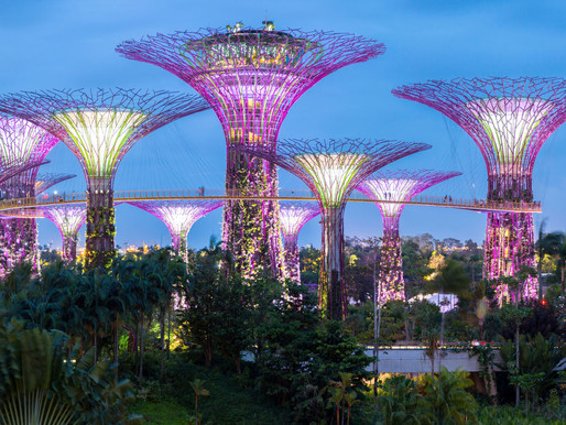 Singapore: Covid-19 - Dealing With Counterparties At The Risk Of Insolvency