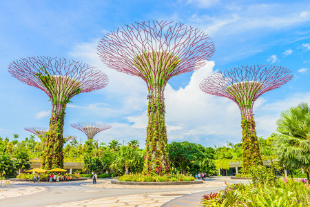 Singapore - To Hedge Or Not To Hedge? That Is The (Mitigatory) Question.