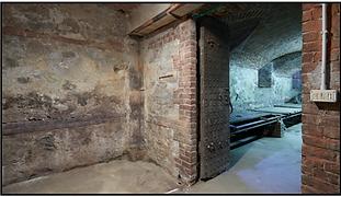 Bunker Dream TN
