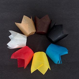 Tulip cups all.jpg