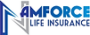 Namforce Namibia Life Insurance.png