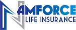 Namforce Namibia Life Insurance.png
