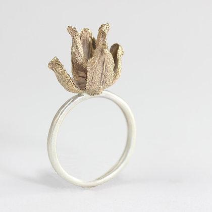 Cedar Husk Ring
