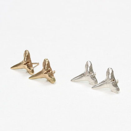 Tiny Shark Tooth Studs