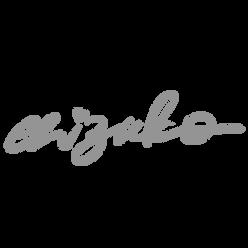 Website Logos-06.png