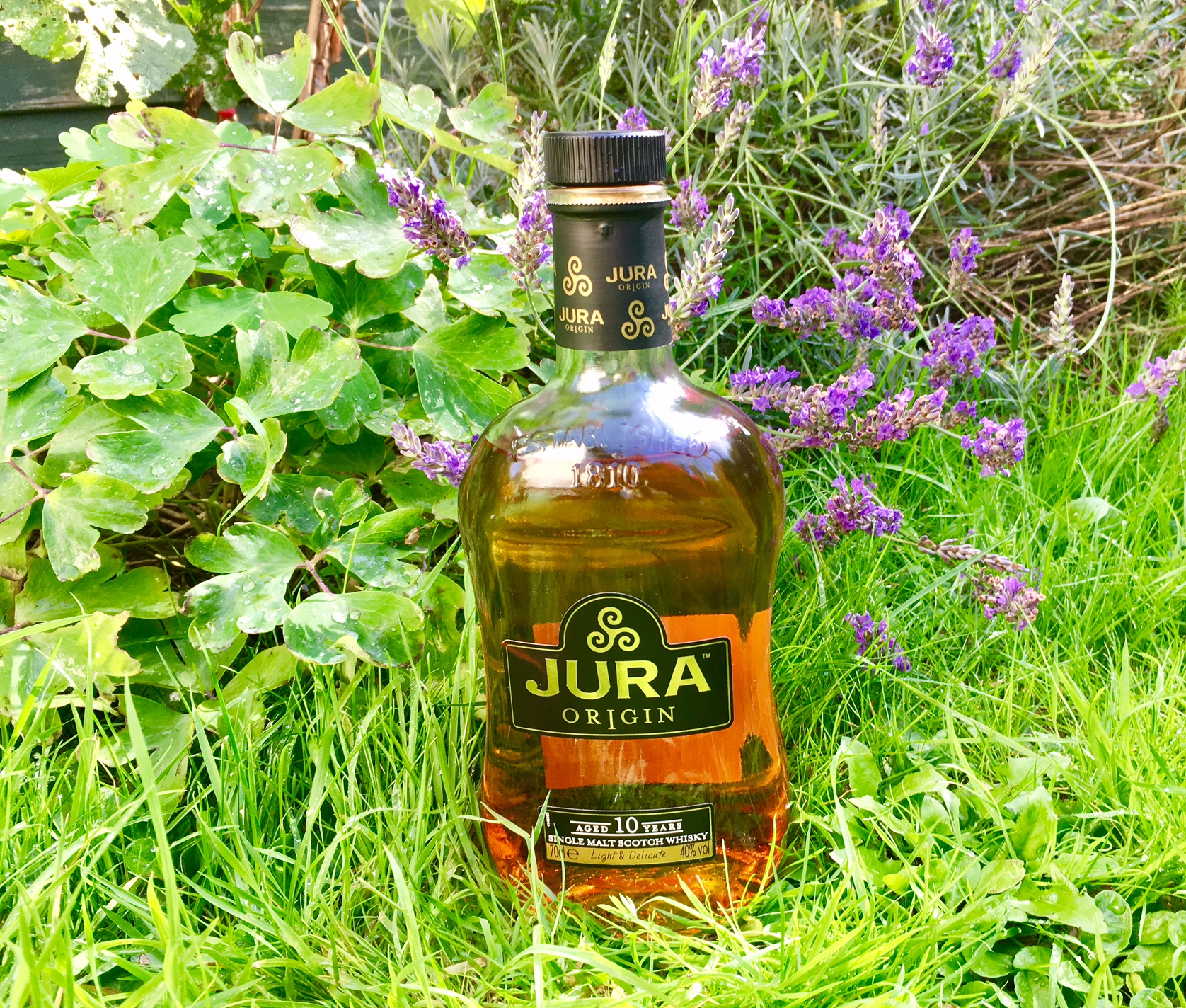 Jura single malt whisky