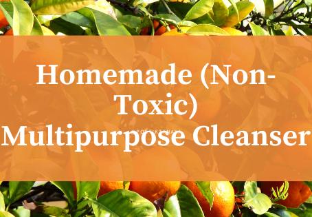 DIY Non-Toxic Multipurpose Cleaner