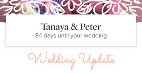 Wedding Update | T-Minus 2.5 Months