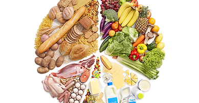Food Satety Testing for microbial contamination and screening of toxins, allergens, heavy metals, pesticides in foods / food products