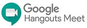 google_meet__edited.jpg