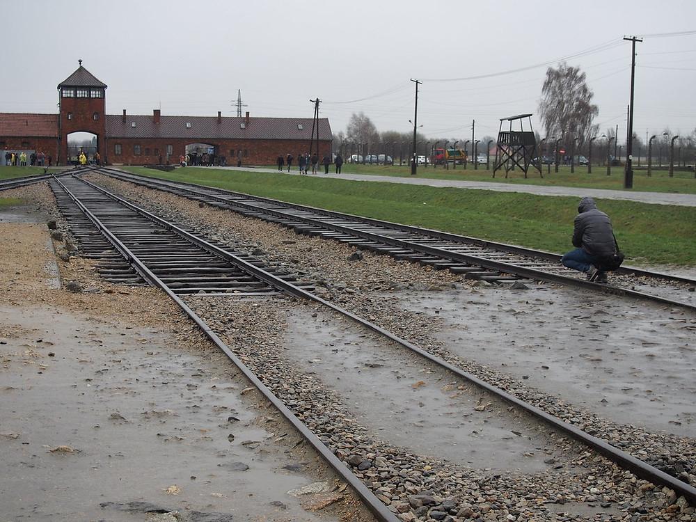 Train tracks into Auschwitz death camp.