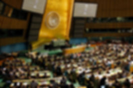 Model UN Students in General Assembly Hall, 13 May 20 General Assembly Hall for 10