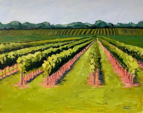 Hamptons Vineyards