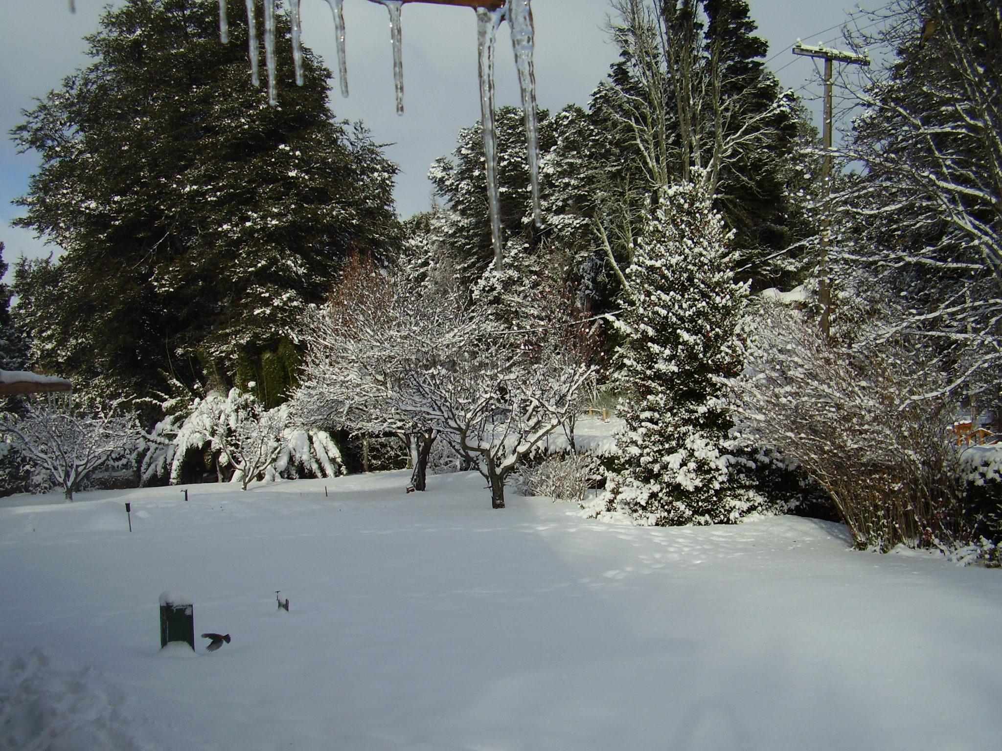 Nieve de Otoño