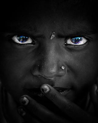 Blue-eyed Black Beauty
