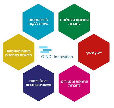 גינדי חדשנות.png