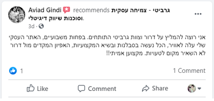 Review - Aviad Gindi.png