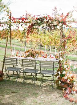 Vineyard at Riverdale Farm in Autumn