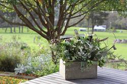 Riverdale_Farm_seasonal_flowers.png