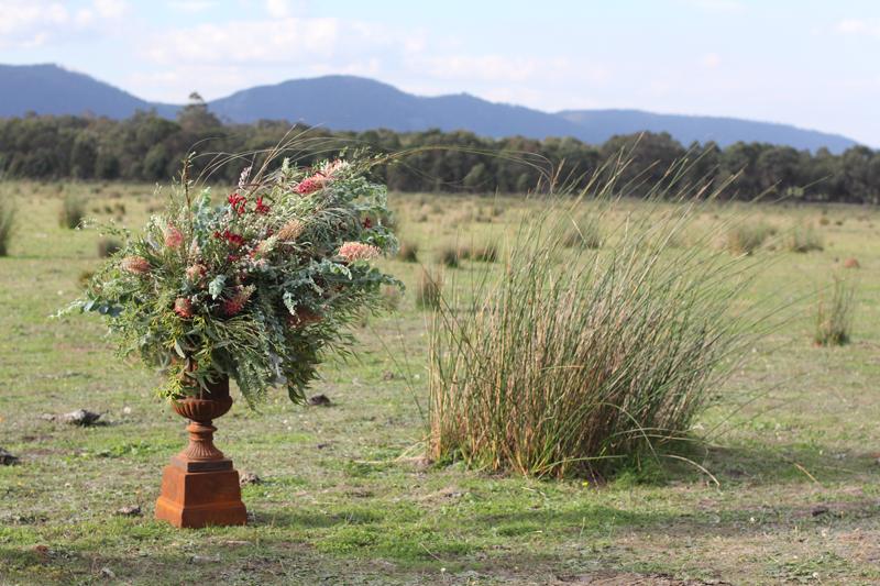 Australian native urn arrangement