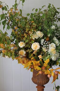 Riverale_Farm_seasonal_flowersa.png