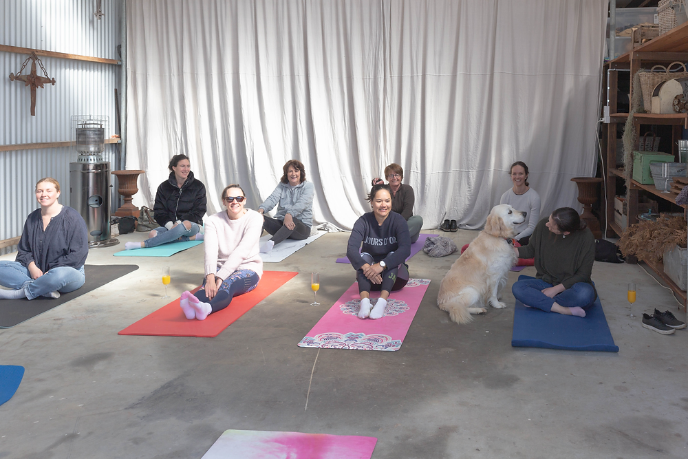 Mindfulness with Nia Connop of Extend OT for MedArtation at Riverdale Farm, Albany